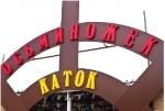 Вход на каток аквапарка Осьминожек