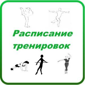 иконка расписание тренировок фигурного катания